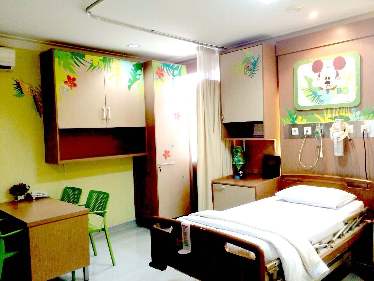 Mickey Jungle Room